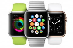 Two Apple Watch Upgrades for 2016?
