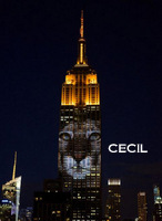 Empire State: Protect the Animals
