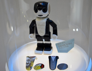 RoBoHoN in display