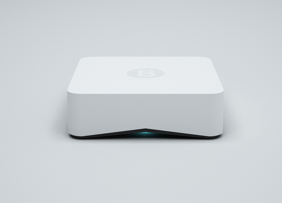 A BOX for Smart Home Protection