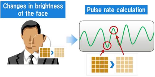 Measuring the Pulse via Camera